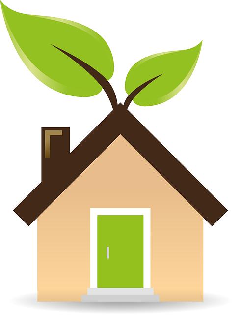 Пассивный дом: экологичный и экономичный